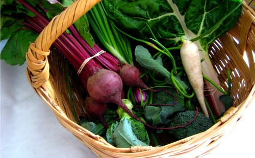 beets, scapes, broccoli, daikon, chard, scallions